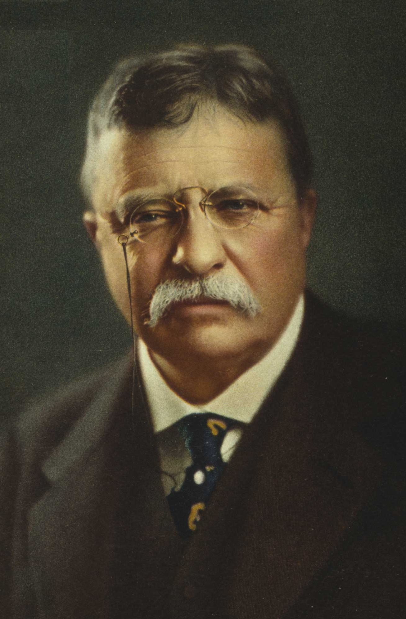 a review of the presidency of theodore roosevelt 2018-06-14  theodore roosevelt: theodore roosevelt, the 26th president of the united states and a writer, naturalist, and soldier.